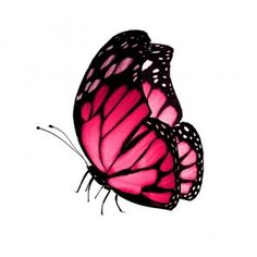 Sticker Papillon rose