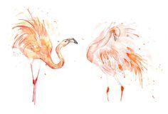 Flamingo Feathers IV | Flickr