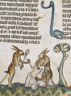 Medieval Rabbits
