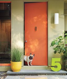 A playful, oversize house number in a punchy color breaks up sober straight lines; the rectangular knocker and cylindrical sconce match the spareness of the door. Easy-care maiden grass warms up the scene while respecting its graphic ethos.