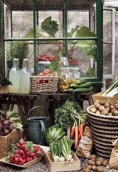 Ideas Garden Table Vegetable For 2019 – gardening ideas vegetable Country Farm, Country Living, Gardening For Beginners, Gardening Tips, Succulent Gardening, Down On The Farm, Garden Table, Dream Garden, Farm Life