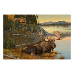 Experience the glory of nature with this Reflective Art Squatters Rights canvas wall art. Outdoor-inspired print x Canvas, MDF Horizontal display Attached sawtooth hook Wipe clean Model no. Wildlife Paintings, Wildlife Art, Animal Paintings, Oil Paintings, Deer Art, Moose Art, Moose Pics, Moose Pictures, Hunting Art