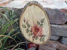 Obrázky - ruže na orechoch - 1697664