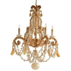 ❥ seashell chandelier
