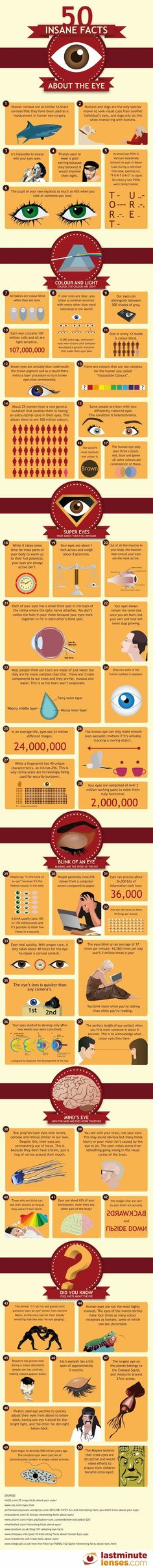 50 Insane Facts About The Eyes | Optical Vision Resources