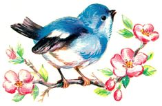 16 Vintage Style Bluebirds and Blossoms Waterslide Decals. $9.95, via Etsy.