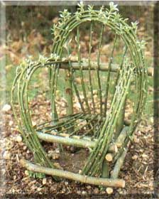 Willow chair made at The Threshing Barn