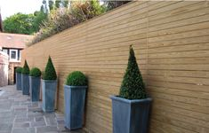 Southern Yellow Pine Timber | Arbour Landscape Solutions | Buy Online