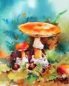 Mushroom Drawing, Mushroom Art, Watercolor Plants, Watercolor Paintings, Watercolours, Painting Lessons, Acrylic Art, Urban Art, Insta Art