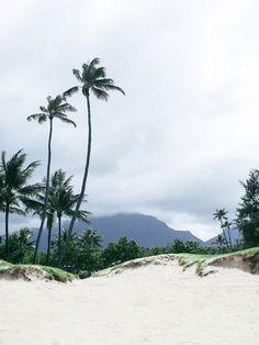 pinterest @lilyosm   hawaii travel beaches sunset ocean beautiful fruit plane amazing vacation