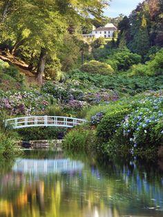 Trebah gardens-visited during 2012