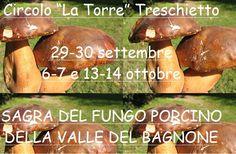 Sagra del fungo porcino Bagnone 2012