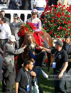 I'll Have Another, with Mario Gutierrez up, was led from the winner's circle after winning the 138th running of the Kentucky Derby at Churchill Downs in Louisville, Ky. Saturday May 5, 2012. Photo by Charles Bertram | Staff