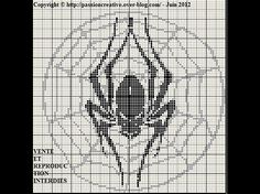 Araignée et toile