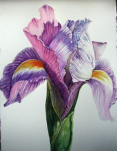 Image Detail for - Simply Elegant Iris""