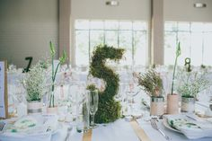 moss-covered table numbers