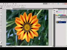 (7:00) how to use the quick selection tool that was new is Photoshop CS5.