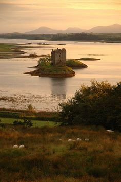 Castle Stalker, Loch Laich, Scotland. Looks exactly like this pic was awesome there.