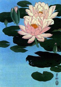 Water Lily Japanese Art Print by Koson Japanese Asian Art Japan Seerose 22 x 30 japanischer Kunstdruck von Koson Japanese Asian Art Japan Japanese Drawing, Japanese Painting, Koi Painting, Art Inspo, Inspiration Art, Art Asiatique, Japanese Flowers, Japanese Lotus, Japanese Sleeve