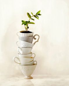 Annabelle Breakey, commercial, editorial, food, still life and product photographer, Tower of Tea Cups