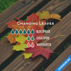 essential oil blend to help with anxiety doterra essential oil recipe for anxiety Fall Essential Oils, Essential Oil Diffuser Blends, Essential Oil Uses, Young Living Essential Oils, Doterra Diffuser, Doterra Oils, Doterra Blends, Yl Oils, Aroma Diffuser