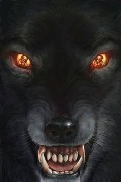Fenrir the wolf of Norse mythology and vikings learn this - Anime Wolf Anime Wolf, Wolf Love, Big Bad Wolf, Wolf Tattoos, Wolf Spirit, Spirit Animal, Fantasy Creatures, Mythical Creatures, Tier Wolf