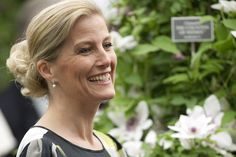 Sophie, Countess of Wessex's chignon was a sophisticated hairstyle choice for the flower show.