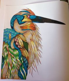 Millie Marlotta Tropical World A Journey Through My Colouring Heron