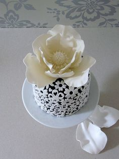 Black Fondant Cake with White Lace Accents & Giant White Magnolia Topper