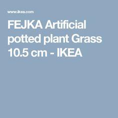 FEJKA Artificial potted plant Grass 10.5 cm  - IKEA
