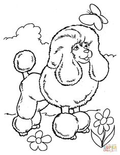 Printable Poodle Coloring Page Free PDF Download At