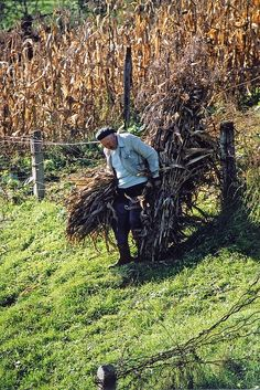 Bringing in the crops near Segesvár, Transylvania. People Around The World, Around The Worlds, Saint Marin, Central Europe, Country Life, Country Farm, Beautiful Places To Visit, Eastern Europe, Travel Destinations