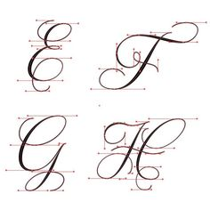 E-H flourished Copperplate with vector points. E-H flourished Copperplate with vector points. Copperplate Calligraphy, Learn Calligraphy, Calligraphy Handwriting, Calligraphy Letters, Penmanship, Caligraphy Alphabet, Hand Lettering Alphabet, Script Lettering, Creative Lettering