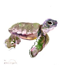 Sea Turtle  12 x 12 in original watercolor by ORIGINALONLY on Etsy