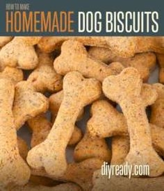 Homemade Dog Biscuits | Recipe and Instructions #diyready www.diyready.com