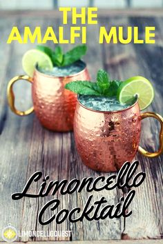 Amalfi Mule - The Sexiest Cocktail You Can Stuff Into a Hammered Copper Mug. Limoncello Cocktails, Alcoholic Cocktails, Easy Cocktails, Cocktail Recipes, Fancy Drinks, Summer Cocktails, Moscow Mule Drink, Moscow Mule With Gin, Moscow Mule Recipe