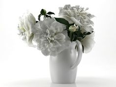 SmallAccents White Peonies 3d model |  N/A