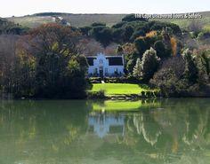 Reflections in the pond at Zevenwacht wine estate, Stellenbosch.