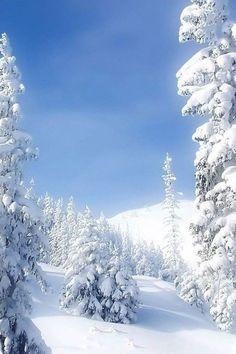 Winter Far Up North!!