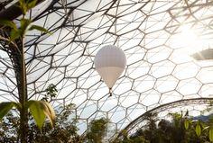 Helium balloon flying in Rainforest Biome