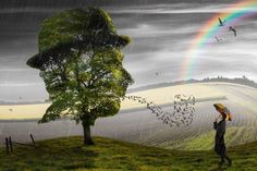 La mente è una porta che sonnecchia sui pascoli della realtà. cit. #mmgFantasia/05 pic.twitter.com/eM3v2Dwgr5
