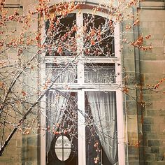 "49 mentions J'aime, 5 commentaires - Le Chaisier Art Paris (@le_chaisierartparis) sur Instagram : ""Deep Inside the window i saw the another one  it was small and tight with a mysterious bright...…"""