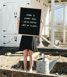 Letterboards that are funny