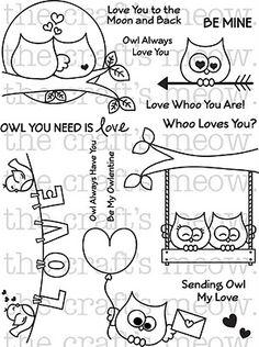 Owl heaven!