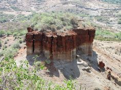 """Olduvai Gorge, the archaeological site also known as """"The Cradle of Mankind"""", is a steep-sided ravine in the Great Rift Valley that stretches through eastern Africa. It is in the eastern Serengeti Plains in northern Tanzania. This site was occupied by homo habilis approximately 1.9 million years ago, Paranthropus boisei 1.8 million years ago, and Homo erectus 1.2 million years ago. Homo sapiens are dated to have occupied the site 17,000 years ago."""