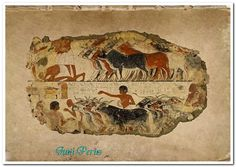 Painting from the tomb chapel of Nebamun  Upper Egypt, 18th dynasty, ca. 1350 BC
