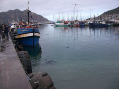 Hout Bay Harbour, Cape Town African Image, Cape Town