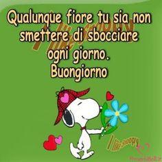 Immagini Belle da ImmaginiBuongiornoBelle.it Snoopy, Good Morning, Humor, Comics, Words, Dita, Peanuts, Alice, Friends