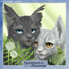 Stormlynx and Willowheart