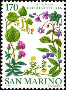 ◇Sanmarino  1977    Herbalist - U.T.I.F.A.R. - association